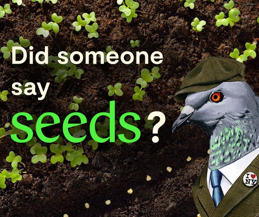 seeds passport app
